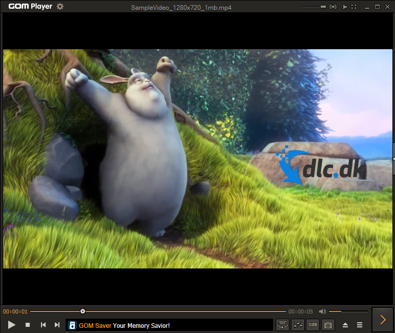 Screenshot af GOM Media Player