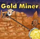 Gold Miner - Boxshot