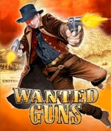 Wanted Guns - Boxshot