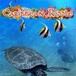 Caribbean Riddle - Boxshot