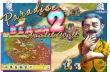 Paradise Beach 2 - Boxshot