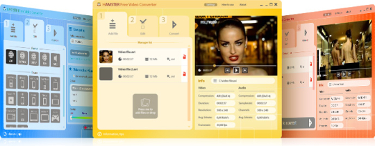 Screenshot af Hamster Free Video Converter
