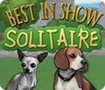 Best in Show - Boxshot