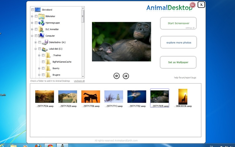 Screenshot af Animal Desktop til Mac