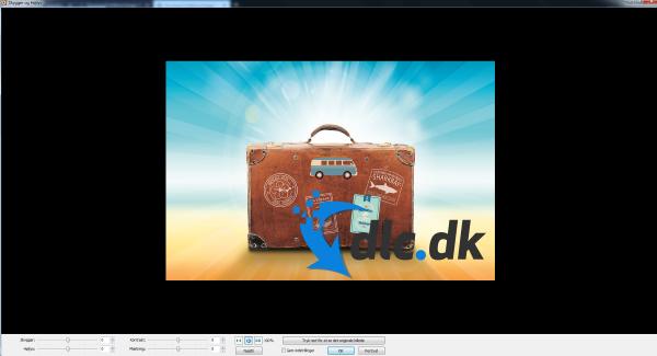 Screenshot af FastStone Image Viewer (dansk)