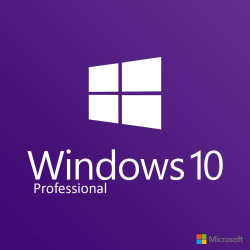 Windows 10 Professional - Boxshot