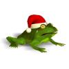 Christmas Super Frog - Boxshot