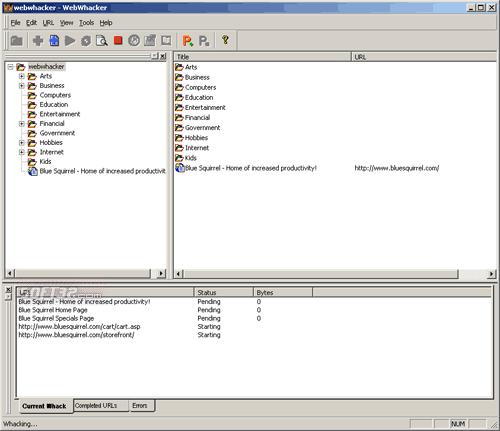 Screenshot af WebWhacker