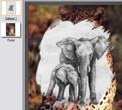 Screenshot af PhotoFiltre Studio (Dansk)