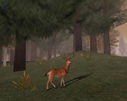Screenshot af Deer Hunter 5: Tracking Trophies