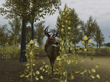 Screenshot af Deer Hunter 2004