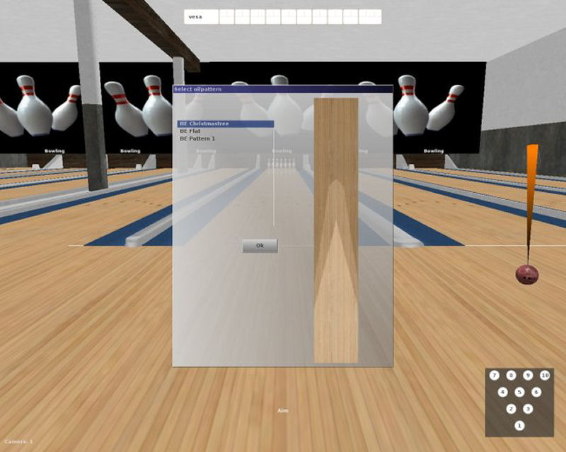 Screenshot af Bowling Evolution