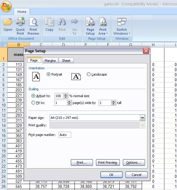 Screenshot af Microsoft Office Excel Viewer