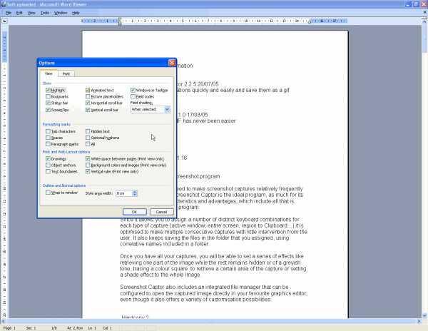 Screenshot af Microsoft Word Viewer